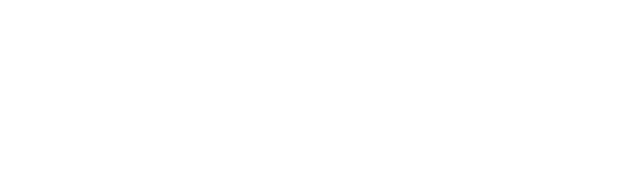 logo Restaurant Nelli